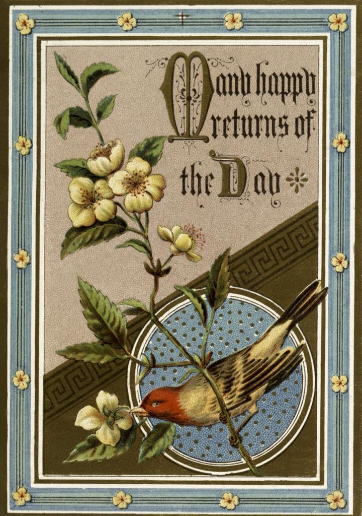 9 happy birthday bird images the graphics fairy