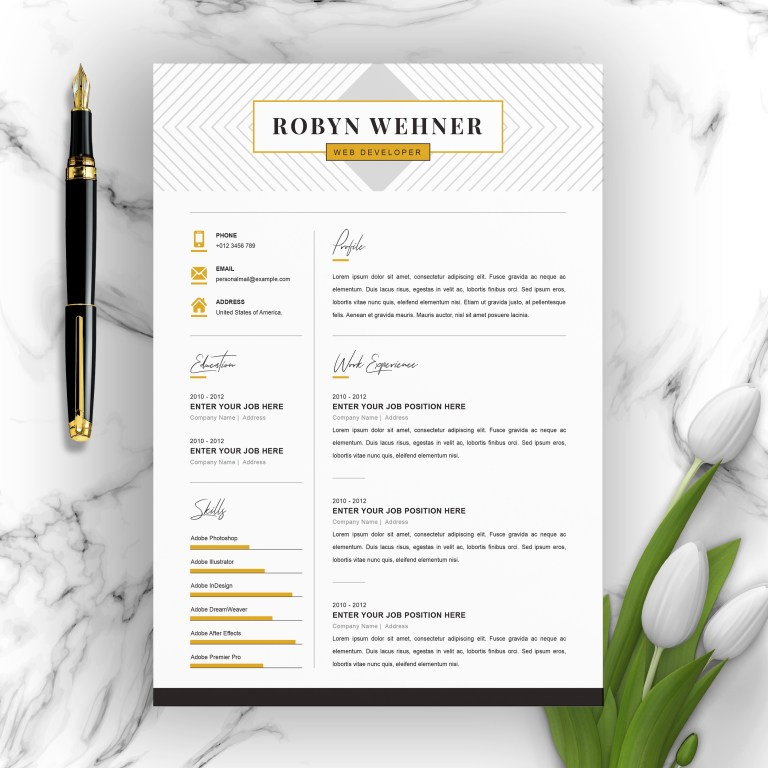 clean and professional creative resume template 3 page