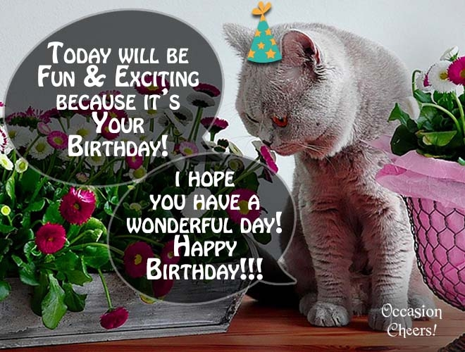 cute animals images birthday wishes for your friends