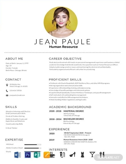 how to create a fresher resume 5 templates free