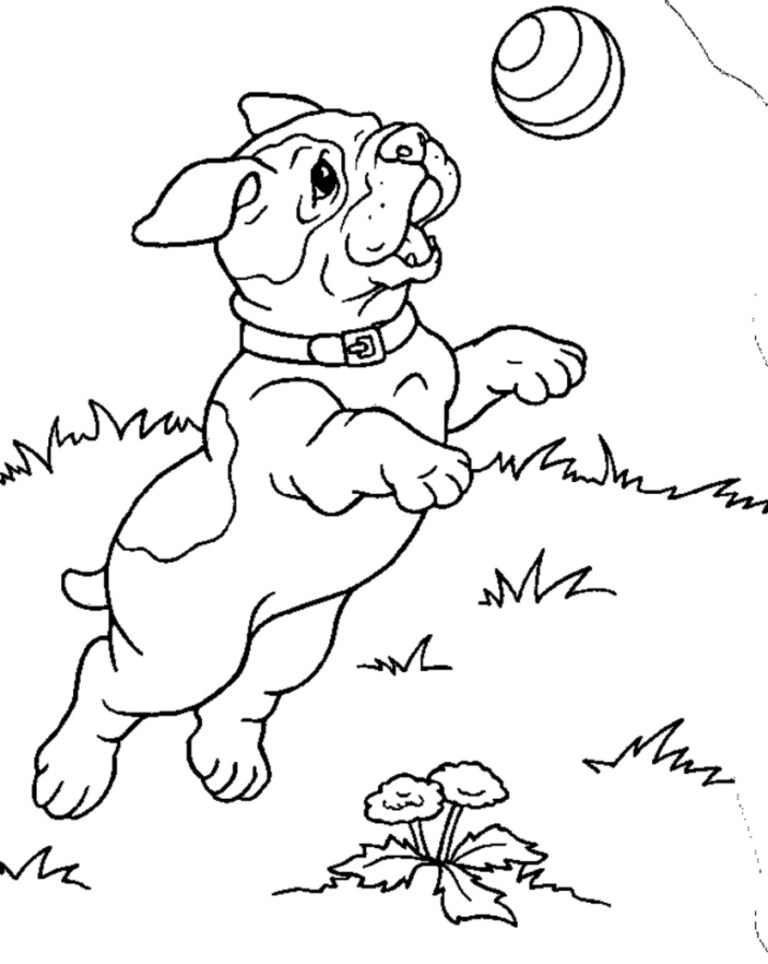 Easy Dog Coloring