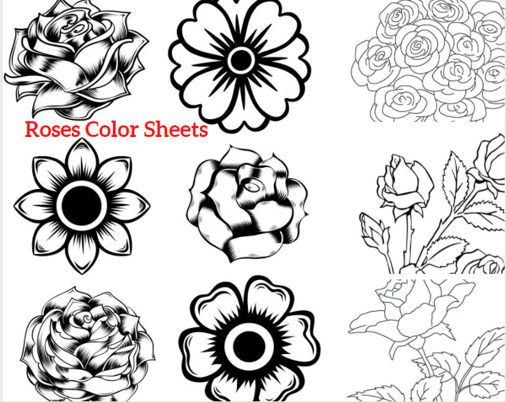 Roses Color Sheets