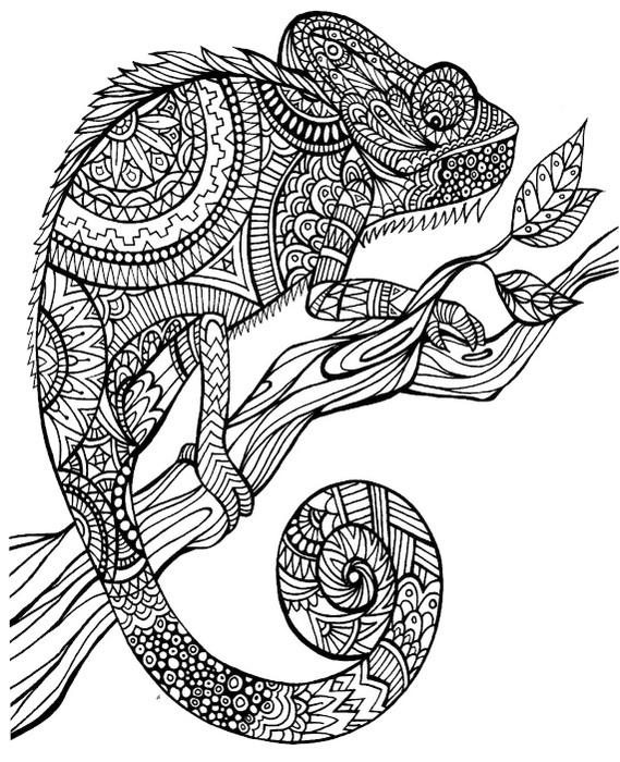 animal mandala chameleon to printable