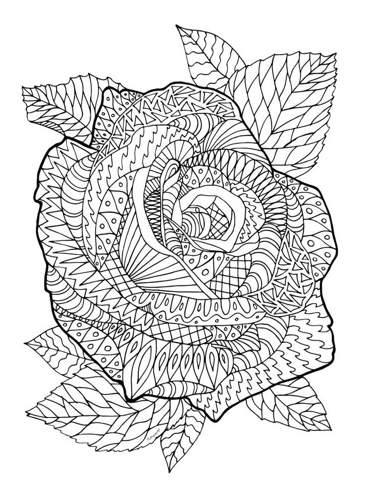 Coloring Pictures Roses
