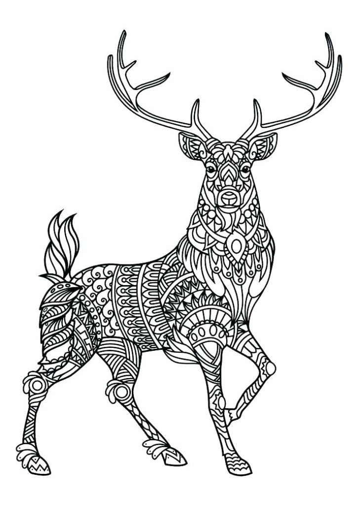cool detailed animal mandala coloring pages