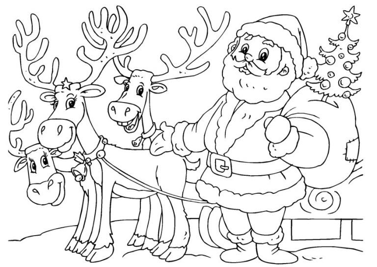 cute santa claus collection