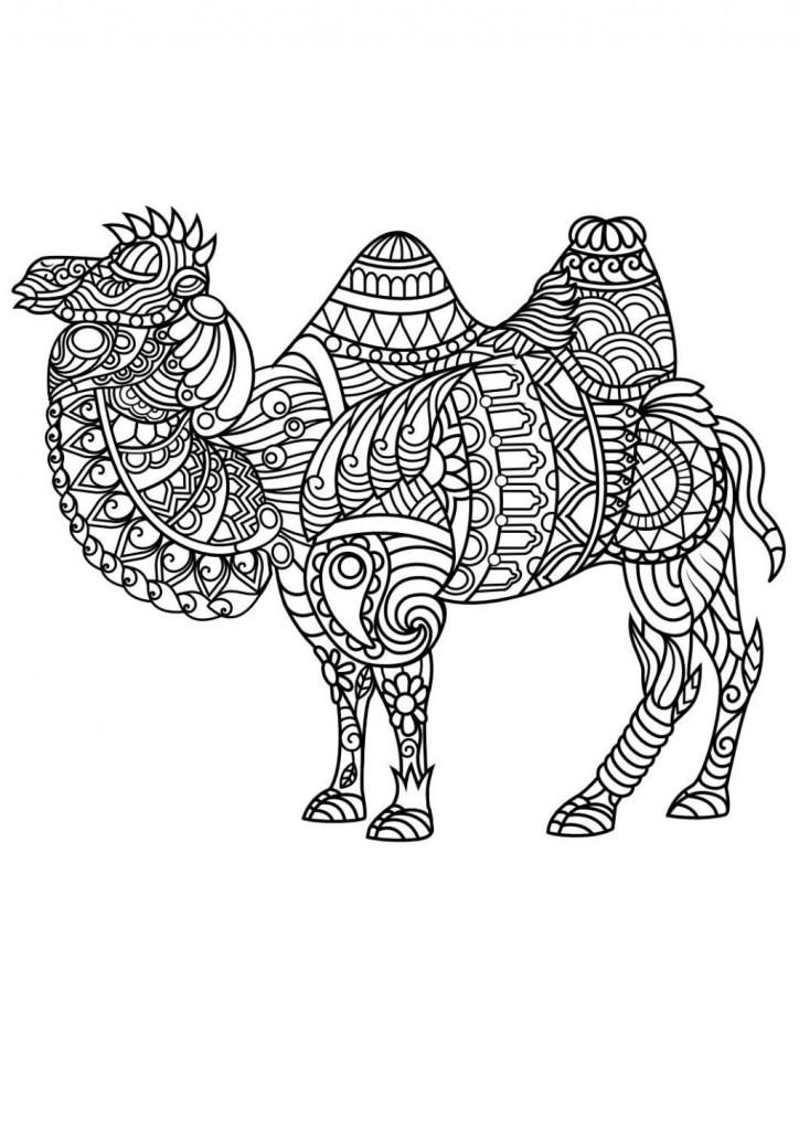 free printable animal mandala coloring pages