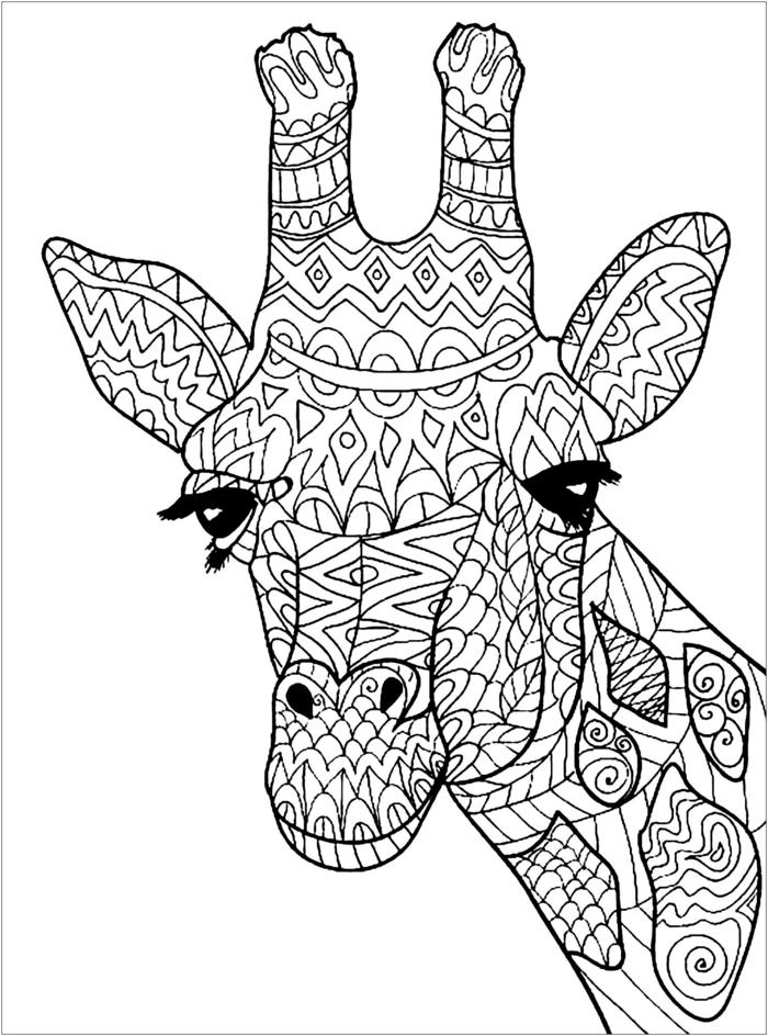 Giraffe Face mandala to Print
