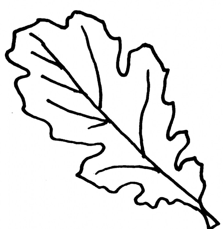 Preschool Fall Leaves Coloring Pages