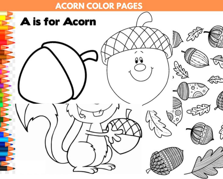 Acorn Color Pages