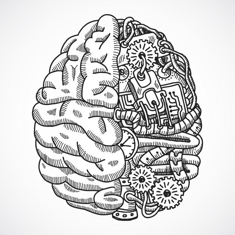 Brain Printout