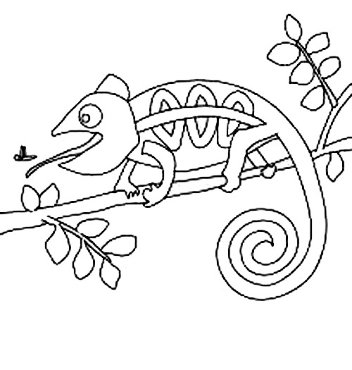 Chameleon Pictures To Color