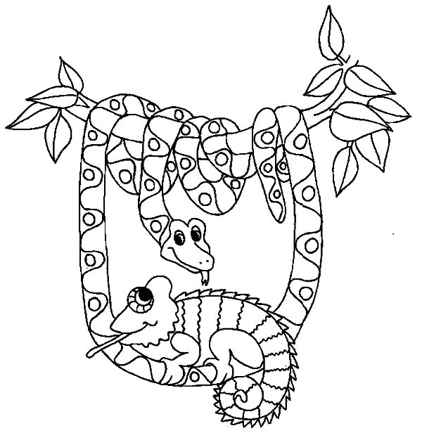 Chameleon Template Printable