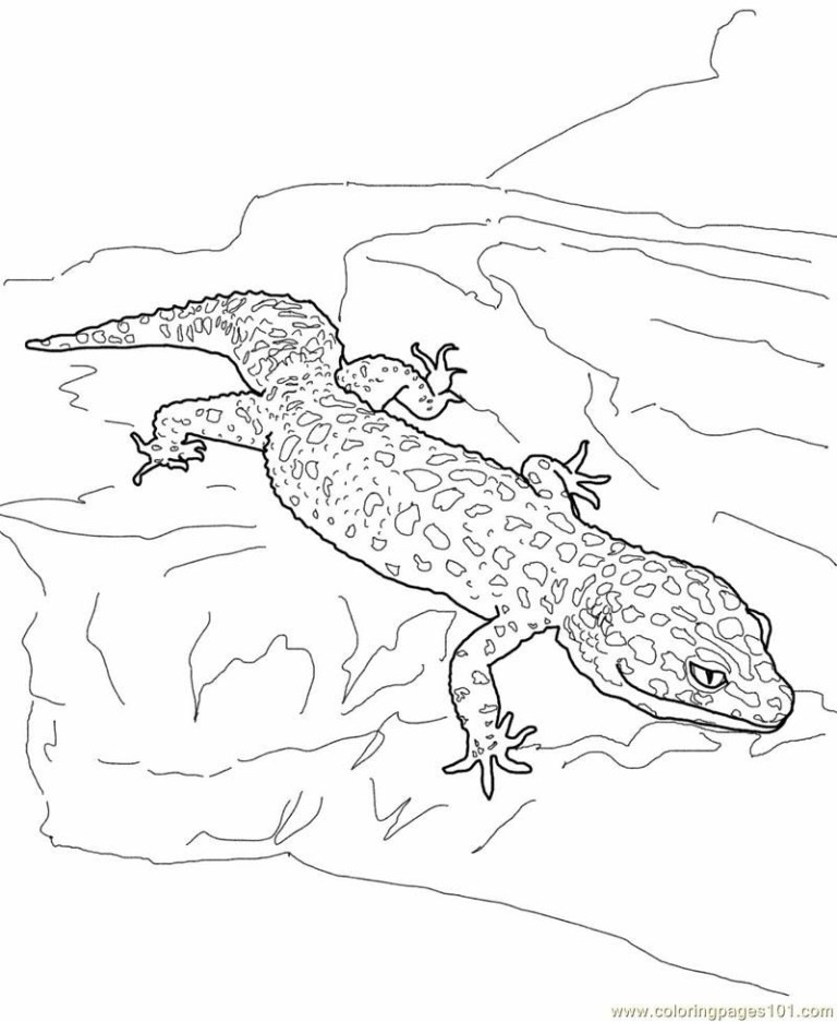 Coloring Page Lizard