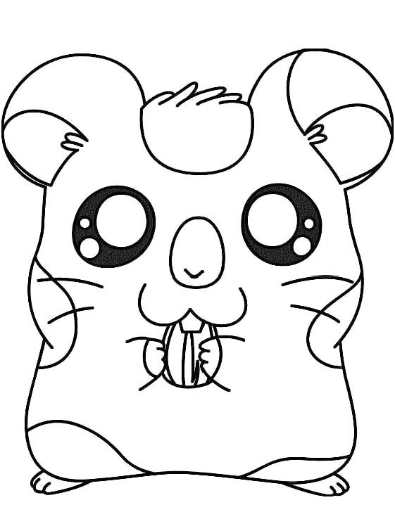 Coloring Pages Of Hamsters