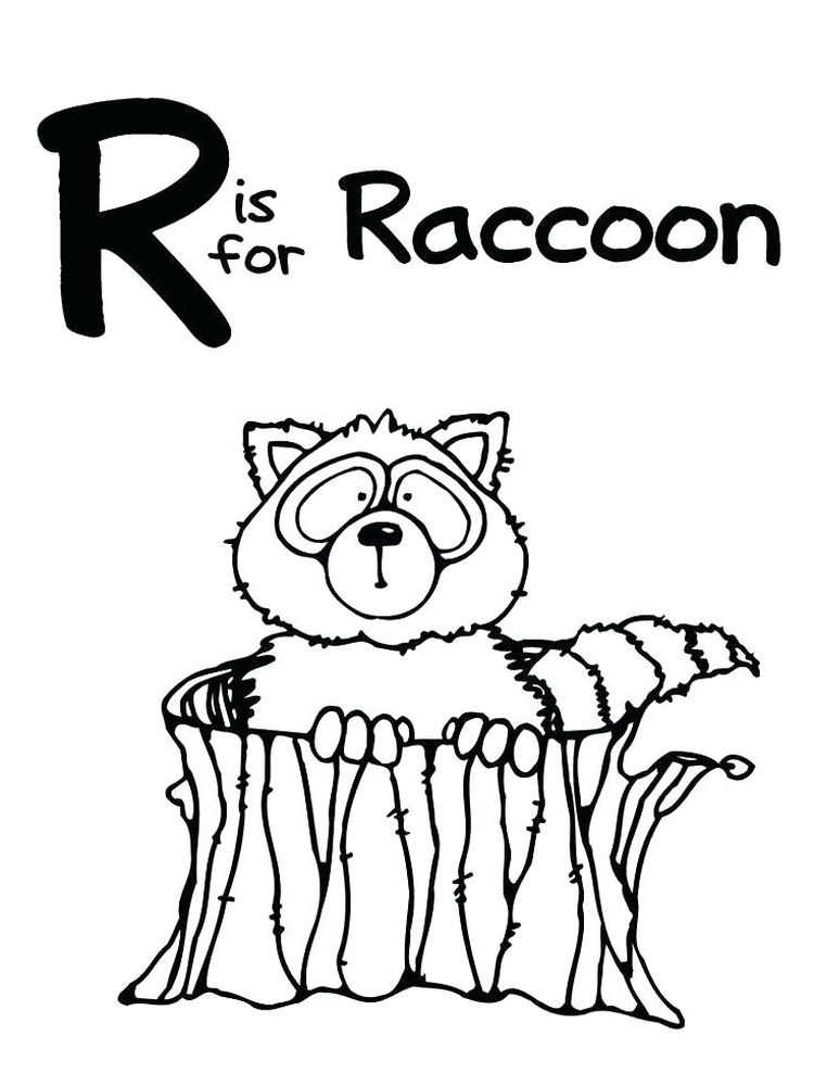 Coloring Pages Raccoons