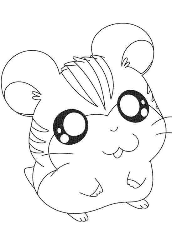 Cute Hamster Coloring Pages