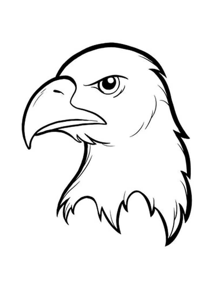Eagle Color Pages