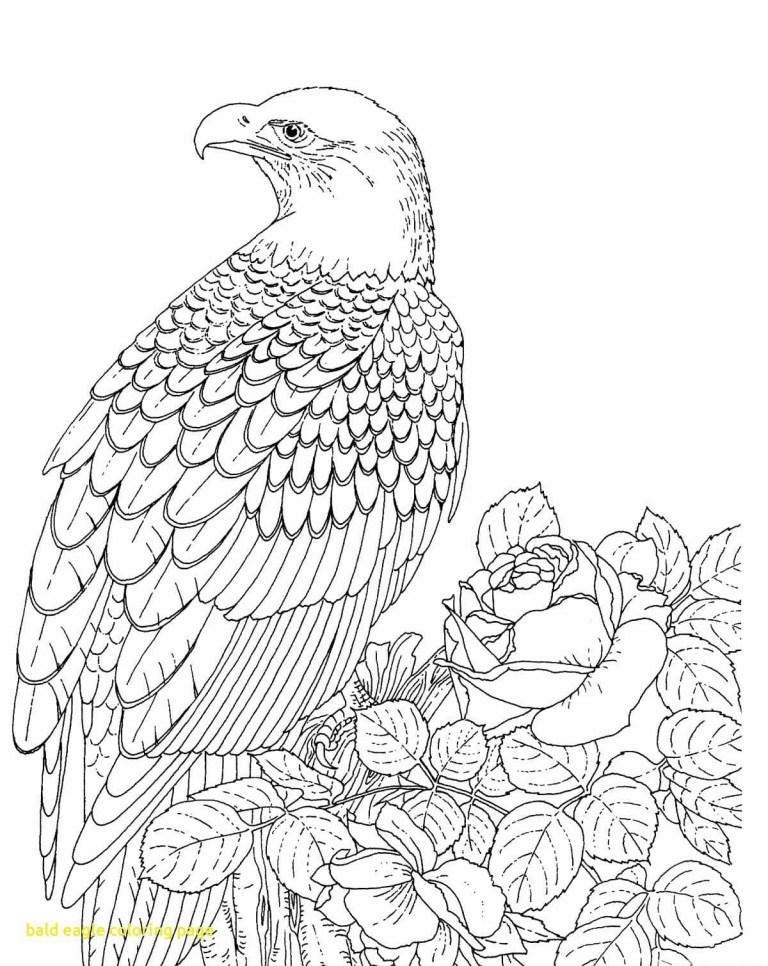 Eagle Pictures To Color