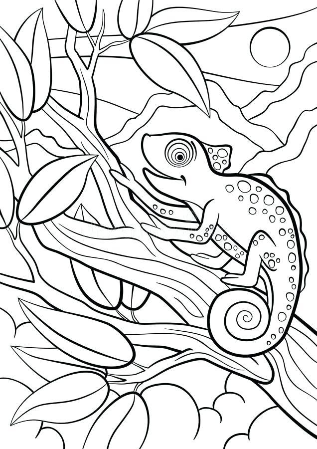 Free Chameleon