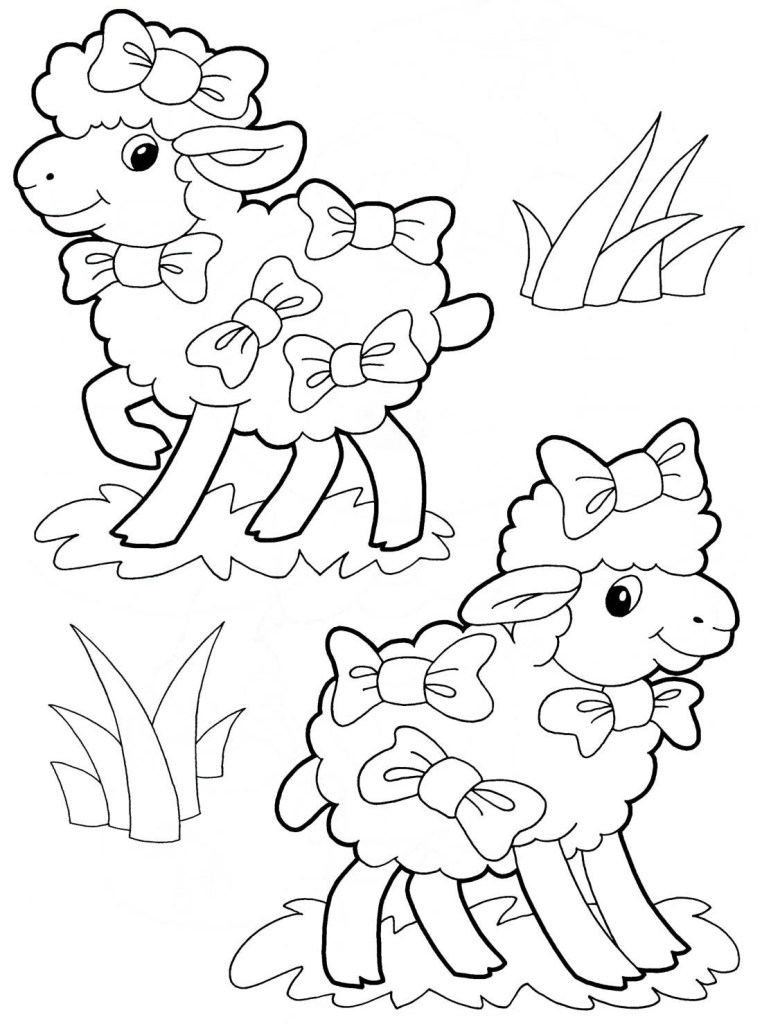Free Lamb Colouring Pictures