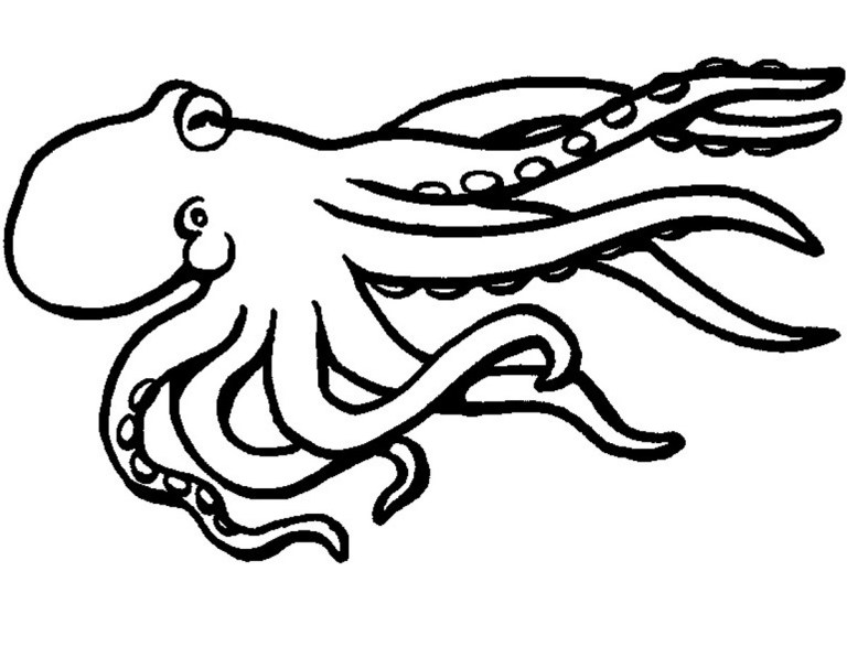 Free Octopus Coloring Pages