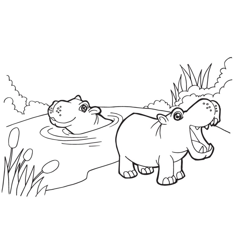 Hippo Colouring Page