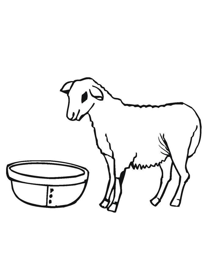 Lamb Printable