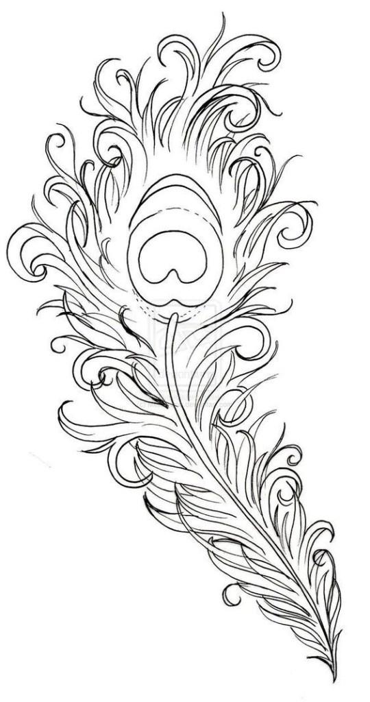 Peacock Printable