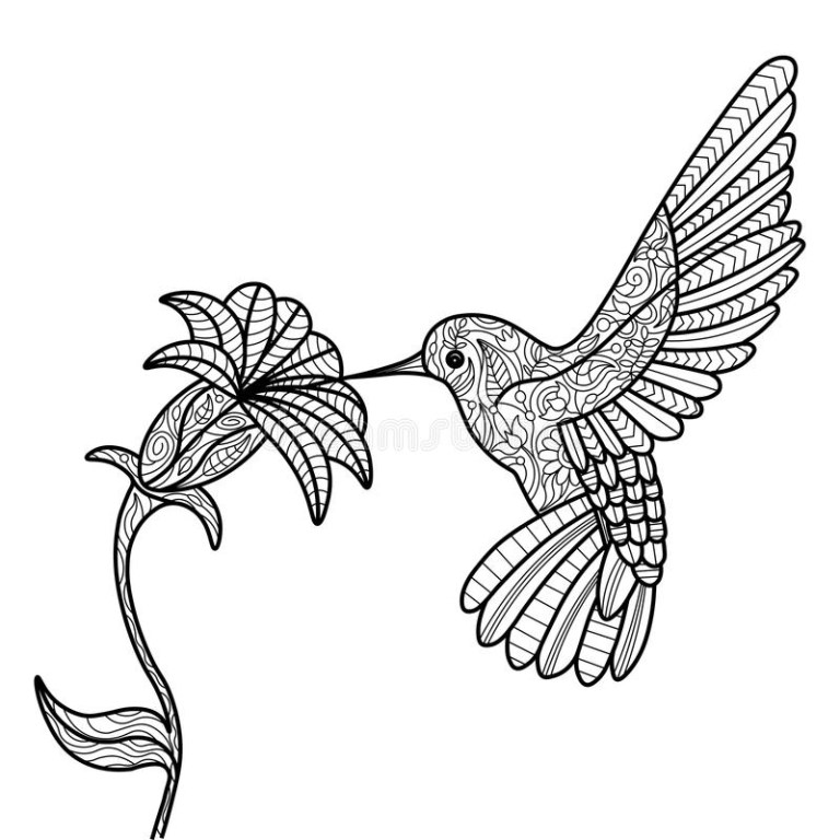 Printable Pictures Of Hummingbirds