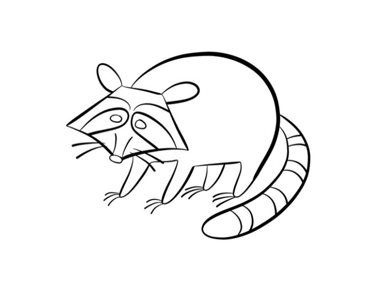 Racoon Printable for Kids
