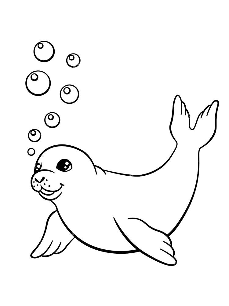 Seal Printable