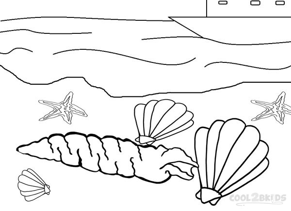 Seashell Pictures To Color