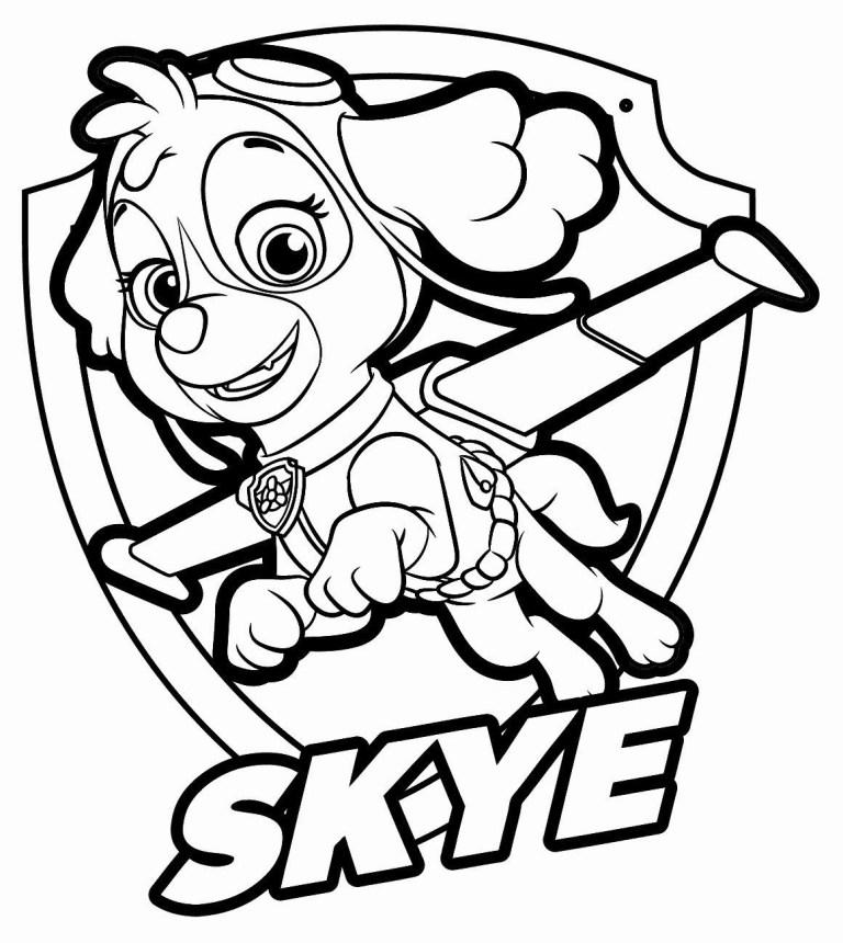 skye paw patrol coloring pages printable free coloring