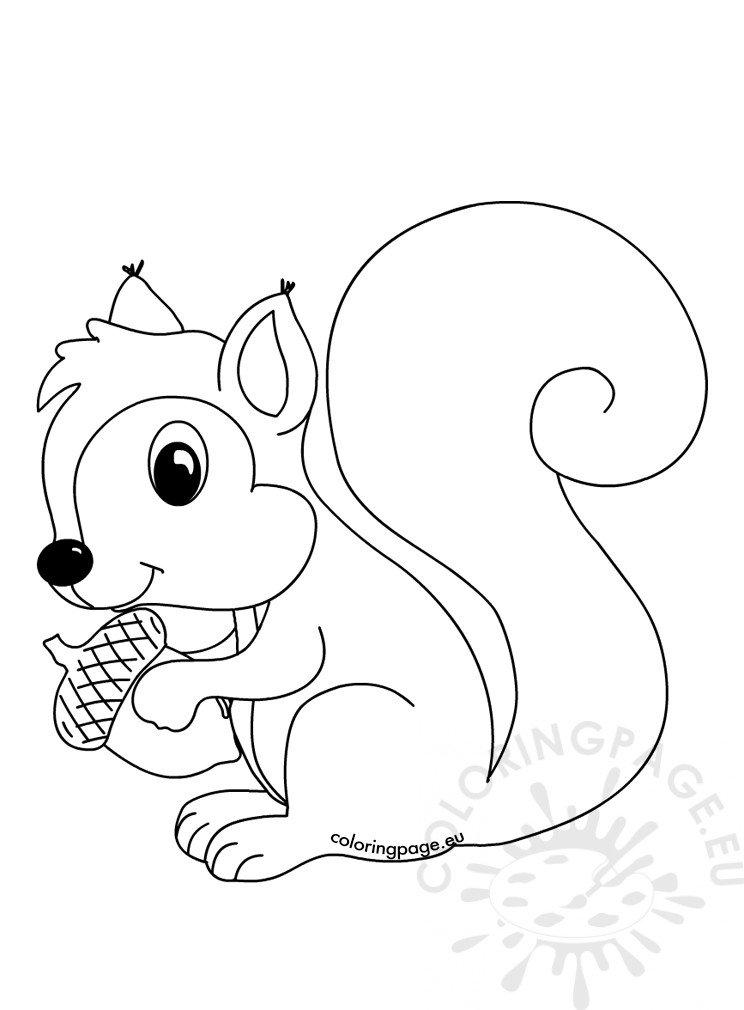 Squirrel Coloring Sheets