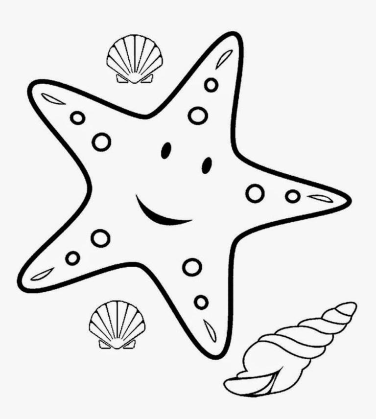Star Fish Color Sheet