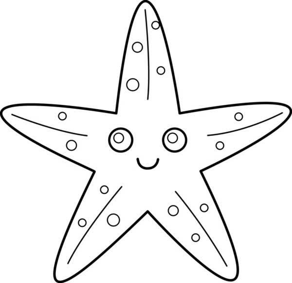Starfish Coloring