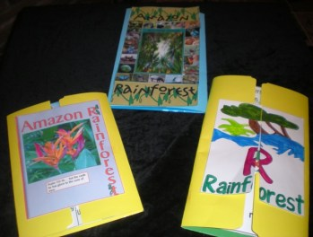 TROPICAL RAIN FOREST – AMAZON, OR AMAZONIA IN SOUTH AMERICA Lapbook