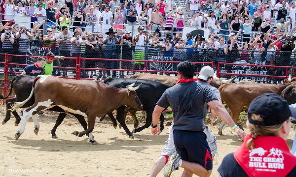 Bull-Run-Richmond-VA-Event-Photo 009