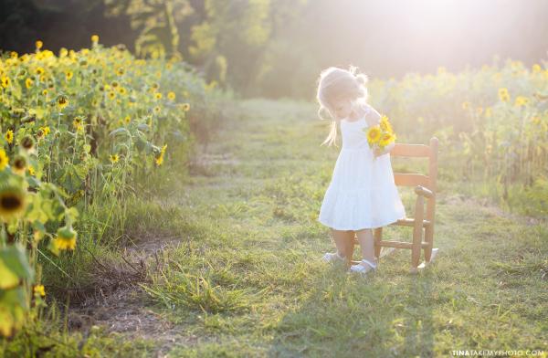 midlothian virginia sunflower field girl children family photography