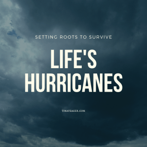How to Set Roots to Survive Life's Hurricanes