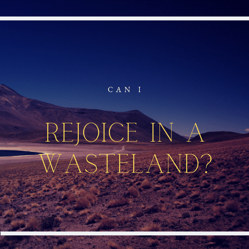 Can I Rejoice in a Wasteland?
