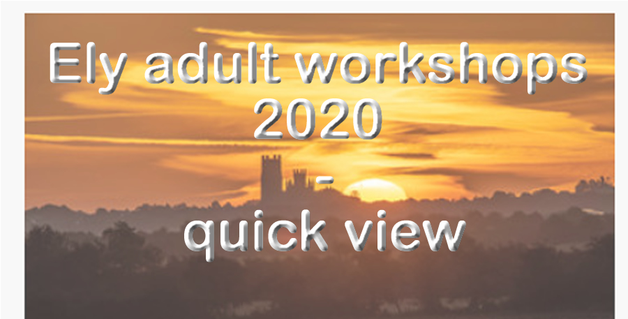 Ely aduly workshops 2020 - quick view