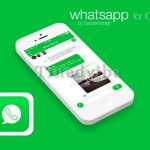 How to Configuring WhatsApp Auto-download for iPhone