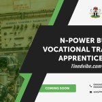 Npower Registration 2020 Online is Out – Apply Now