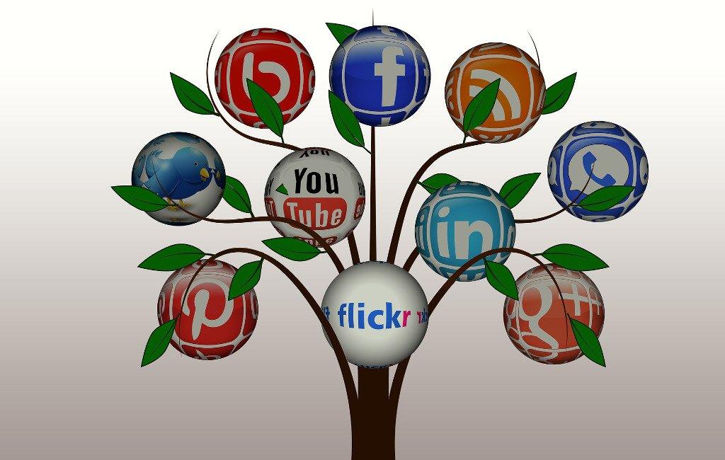 Árbol con diferentes redes sociales