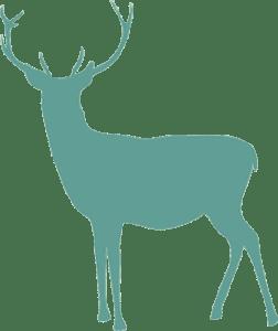 Tinsel & Tunes deer
