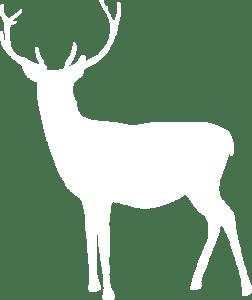 Free Christmas music white deer