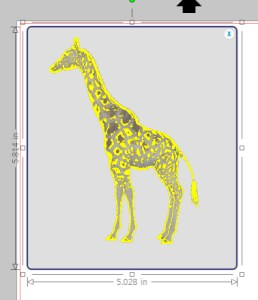 giraffefirstrace