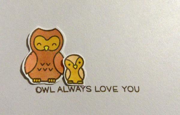 Owl-Inside